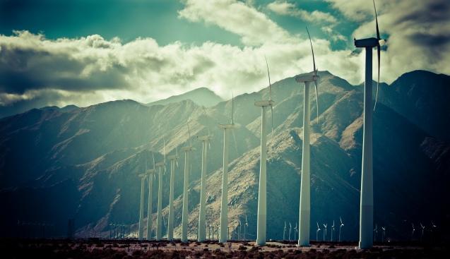 wind farm-1